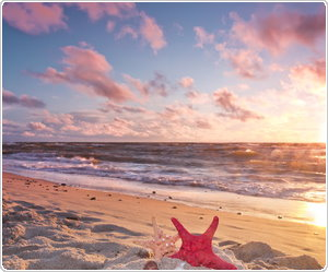 /images/banner/nad_morzem.jpg